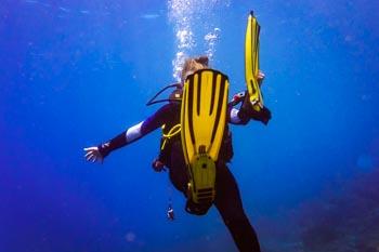 Lost fin - Diver