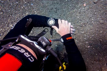 Diver with compass