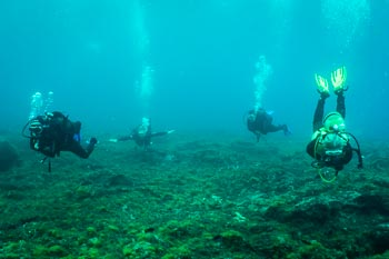 Divers in the water - Tenerife