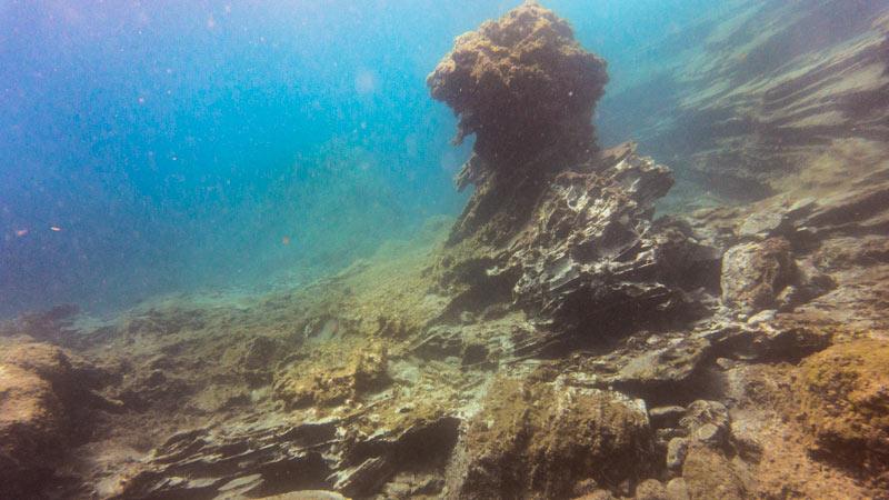 Montana Amarilla Dive Site Landscape