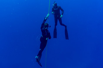 Freediving try session