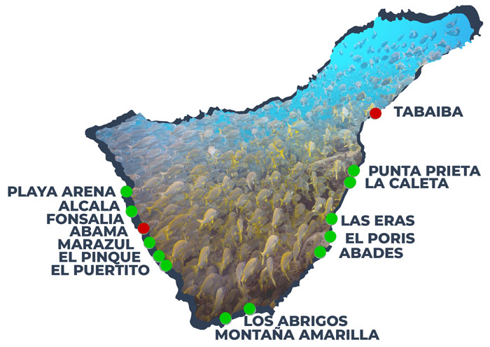 Shore Dive Sites of Tenerife