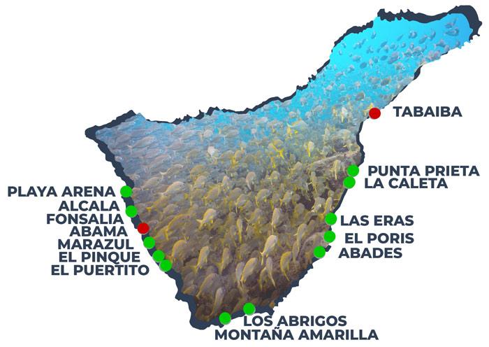 Shore Dive Sites of Tenerife